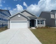 9000 Fort Hill Way, Myrtle Beach image