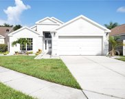 10635 Walker Vista Drive, Riverview image