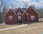 1200 Hickory Valley Road, Trussville image