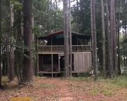 7150 Blacks Bluff Rd, Cave Spring image