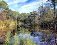 4266 Wild Turkey Way, Johns Island image