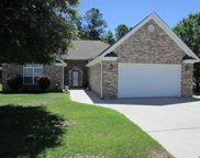 1071 University Forest Dr., Conway image