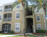8100 Princess Palm Lane Unit 303, Kissimmee image
