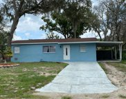 10711 N Connechusett Road, Tampa image
