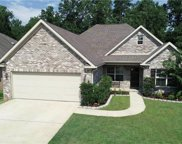 11825 Belle Meade Cir, Northport image