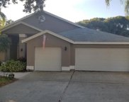 650 Belted Kingfisher Drive N, Palm Harbor image