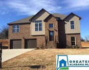 5083 Meadow Lake Crest, Mccalla image
