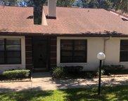 3510 Magnolia Ridge Cir Unit 502, Palm Harbor image
