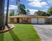 4218 Towergate Drive, Spring image