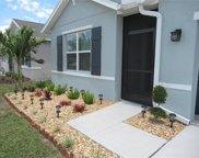13808 Smiling Daisy Place, Riverview image