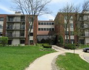3030 Pheasant Creek Drive Unit 103, Northbrook image