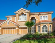 11623 Bristol Chase Drive, Tampa image