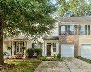 723  Torrey Pines Lane, Fort Mill image
