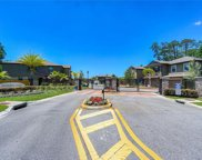 17365 Old Tobacco Road, Lutz image