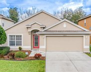 27403 Whispering Birch Way, Wesley Chapel image