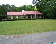 199 Oak Grove Road, Springville image