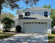 18146 Sandy Pointe Dr, Tampa image