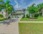 11305 Callaway Pond Drive, Riverview image