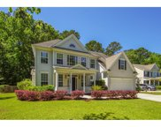 3113 Grass Marsh Drive, Mount Pleasant image