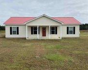 3817 Red Bluff Rd., Loris image