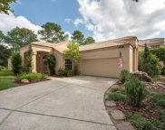 9320 Fairway Lakes Court, Tampa image