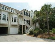 1509 Dutch Iris Court, Mount Pleasant image