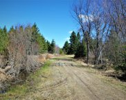 TBD S County Rd 61, Northome image
