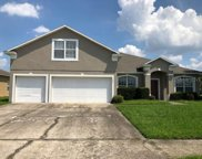1407 Mistflower Lane, Winter Garden image