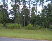 LOT 8 154TH PATH, Live Oak image