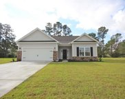 220 Palm Terrace Loop, Conway image