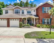 10814 Tradition Loop, Tampa image