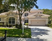 9123 Creedmoor Lane, New Port Richey image