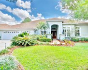 17815 Osprey Pointe Place, Tampa image