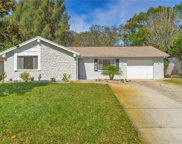 8301 Mill Creek Lane, Hudson image