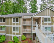 16101 Bothell-Everett HWY Unit E301, Mill Creek image