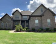 22580 Bluffview Drive, Athens image