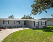 540 CLERMONT AVE S, Orange Park image
