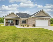 272 Vineyard Lake Circle, Conway image