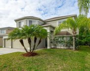 18126 Sandy Pointe Drive, Tampa image