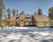 12372 Elk Valley Road, Custer image