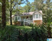 220 Country Hills Road, Montevallo image