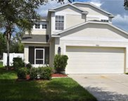 7981 Carriage Pointe Drive, Gibsonton image