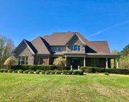 695 Bluebank Road, Morehead image