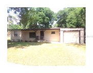 14517 Spivey Drive, Tampa image
