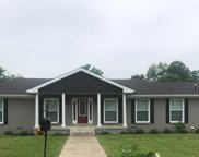 505 Blackpatch Dr, Springfield image