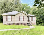 2407 Evergreen Road, Springville image