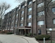 4624 North Commons Drive Unit 202E, Chicago image