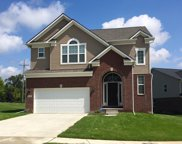 49476 Seagrass, Canton Twp image