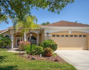 13907 Nighthawk Terrace, Lakewood Ranch image