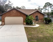 626 ROBERT LIVINGSTON ST, Orange Park image